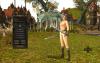 Меню в игре Shaiya с nude-патчем