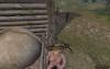 Голая девушка на коне (вид сверху), Mount & Blade с nude-патчем